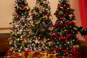 Sheehan_Holiday Pop-9