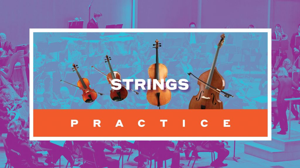 Violin, Viola, Cello, Double Bass